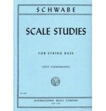 Scale Studies