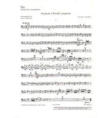 Andante un Rondo Ungarese/ Cello-Double