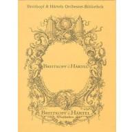 Concerto in D minor BWV 1063/ Violin I