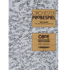 Orchester Probespiel. Oboe