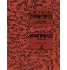Orchester Probespiel. Double Bass