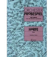 Orchester Probespiel. Harpe