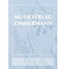 Flötenkonzert D moll/ Red.Pno.