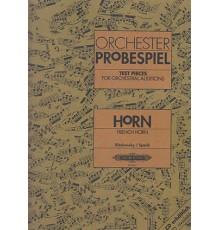Orchester Probespiel. Horn