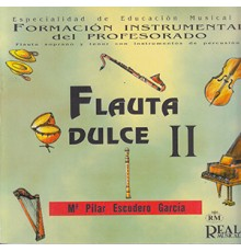 Flauta Dulce II, Formación Instrumental