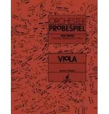 Orchester Probespiel. Viola