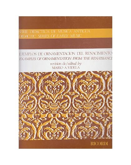 Ejemplos de Ornamentación del Renacimien